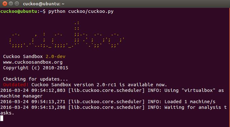 cuckoo_startup